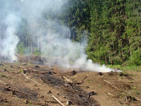 Bilancia lesných požiarov v Európe