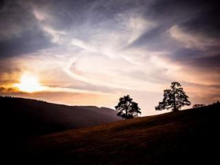 Ceny sú rozdané: zvíťazil Mountain Sunset