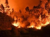 V Portugalsku bojovali s rekordnými 220 požiarmi