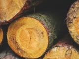 Naukladané drevo sa uvoľnilo a spôsobilo zranenie