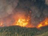 Riziko požiarov trvá, v lese sa treba správať zodpovedne