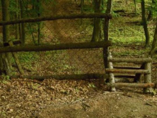 Lesy SR sprístupňujú zvernicu verejnosti