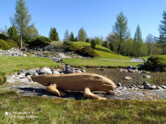 Štátne lesy TANAP-u: Koniec sezóny v botanickej záhrade, jej návštevnosť medziročne stúpla