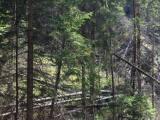Aj TASR informuje o liste ôsmich organizácií premiérovi proti novele zákona o ochrane prírody a krajiny: Stiahnite ju z legislatívneho procesu!